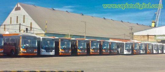 Incorporarán 80 nuevos buses climatizados